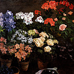 Frederic Bazille - Study Of Flowers