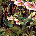 Raymond Booth - an artists garden