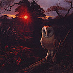 Raymond Booth - Barn Owl On A Winter Eve