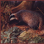 Raymond Booth - Badgersin Adel Wood