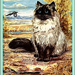 Marge Opitz Buridge - Ds-Cats Art 12 Marge Opitz Buridge