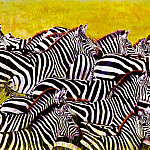Dharbinder Singh Bamrah - Lost In A Crowd Zebra