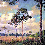 Albert Ernest Backus - gentle breezes back country pines