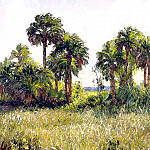 Albert Ernest Backus - gentle breezes palmetto hammock