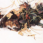 Bs- Robert Bateman- Whitefooted Mouse In Wintergreen, M Foote