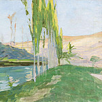 Poplars Growing near a Watercourse