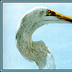 Roger Bansemer - Great Egret 4