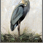 Roger Bansemer - Great Blue Heron 1