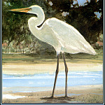 Roger Bansemer - Great Egret 1