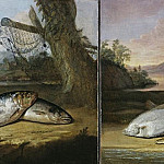 Arthur William Devis - Two fish paintings