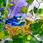 Jane Dyer - Time For Bed Little Bird