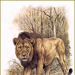 Robert Dallet - Lion de lInde