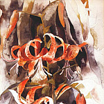 Charles Demuth - tiger lilies 1920