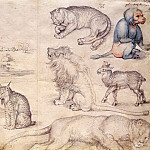 Sketches of Animals and Landscapes, Albrecht Dürer
