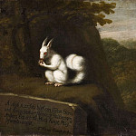 White Squirrel in a Landscape