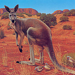 Ego Guiotto - Red Kangaroo Painting