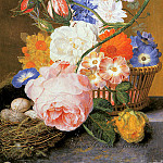Jan Van Huysum - Still life