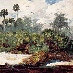 Winslow Homer - In a Florida Jungle