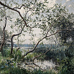 Hans Olaf Heyerdahl - Water Vegetation. Motif from Östergötland