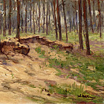 Forest with sand pit