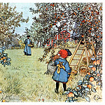 Carl Larsson - 1903 Apple Harvest watercolor