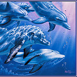 Christian Riese Lassen - Dolphin Quest