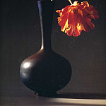 Robert Mapplethorpe - art 214