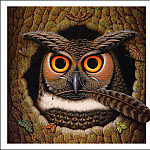 James Marsh - The Wise Owl