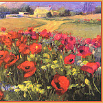 Shirley Novak - Colorado Poppy Patch