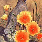 Claudia Nice - Quail& Poppies