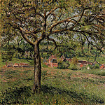 Camille Pissarro - Apple Tree at Eragny. (1884)