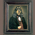 Thierry Poncelet - dog portraits rube gordon
