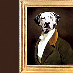 Thierry Poncelet - dog portraits horace smickley jr
