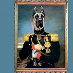Thierry Poncelet - dog portraits king zoxtor of albania