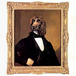 Thierry Poncelet - dog portraits maurice maurice