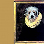 Thierry Poncelet - dog portraits don vasquez y vasquez
