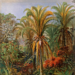 Gustav Taubert - Palm Trees