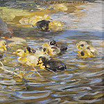 Martinus Rorbye - Ducks