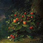 Johann Anton Ramboux - Strawberries