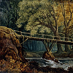 Dense Forest with Bridge over a Stream