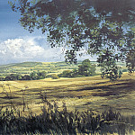 Michael Turner - c mta midlands landscape at the height of the english summer