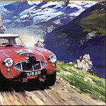 Michael Turner - CorsaScan 016 Works Healey In The Alpine Cup