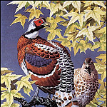 Charles Tunnicliffe - #43625