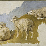 Unknown painters - Three Sheep. Study