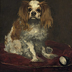 Edouard Manet - A King Charles Spaniel, National Gallery of Art (Washington)