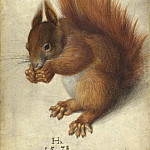 Hans Hoffmann – Red Squirrel, National Gallery of Art (Washington)