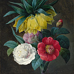 Pierre Joseph Redoute - Four Peonies and a Crown Imperial, National Gallery of Art (Washington)