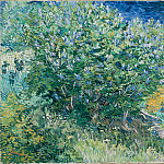 Gogh, Vincent van – Lilac Bush, part 14 Hermitage