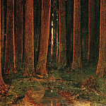 Sunset in the forest., Arhip Kuindzhi (Kuindschi)