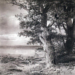 oaks on the shore. 1867, Alexey Kondratievich Savrasov